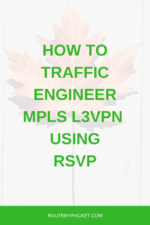 mpls-traffic-engineering-l3vpn